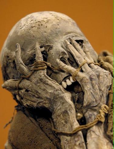 Mummified Bodies