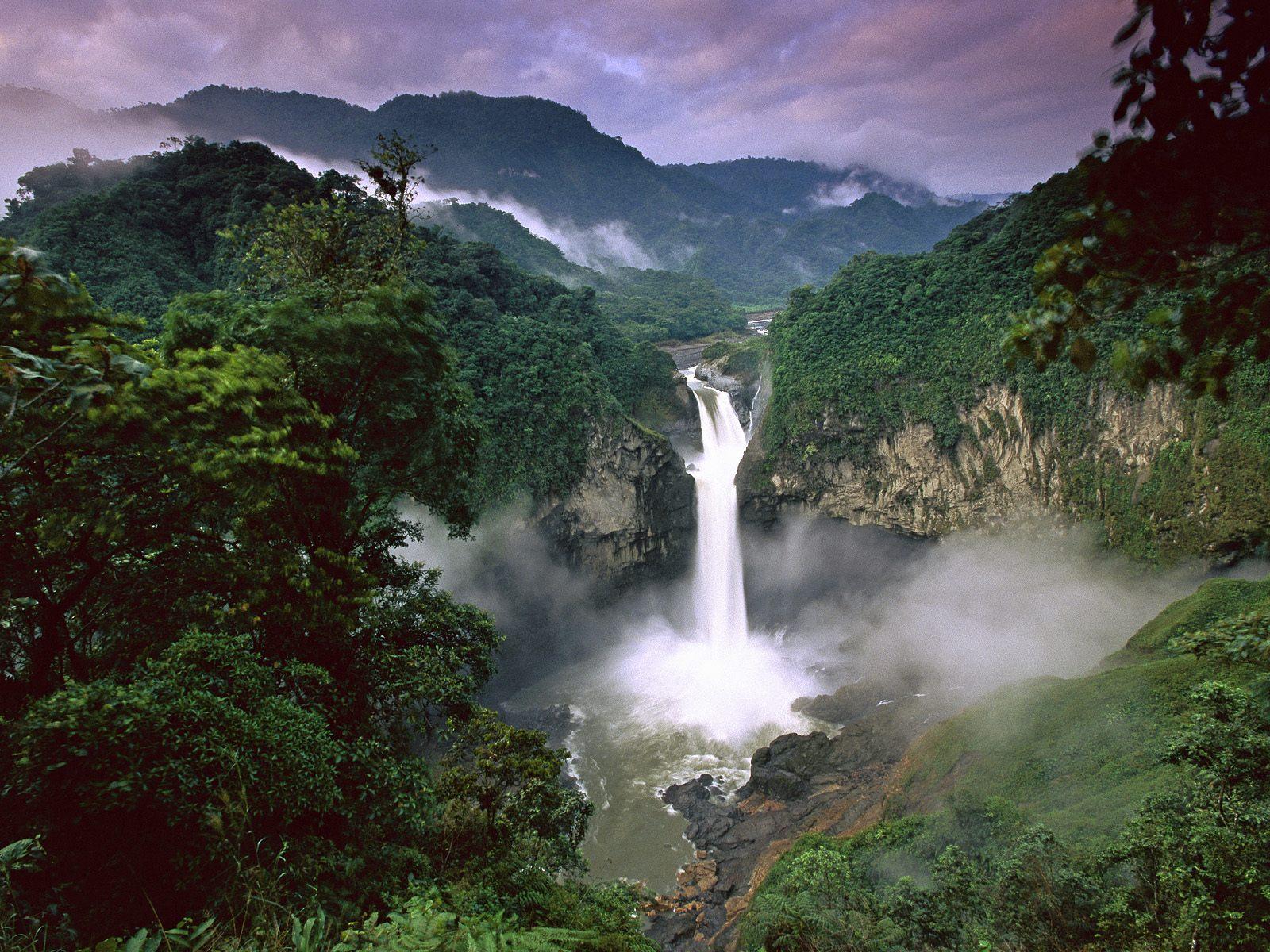 The Amazon Jungle: Tearing Down Amazon Rainforest's Landscapes