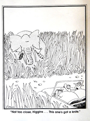 1000+ images about The Far Side on Pinterest