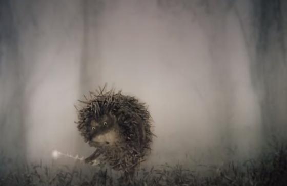 Le hérisson dans le brouillard : une jolie histoire sur ...