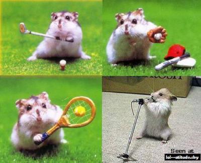 hamster sport deluxe - mathias