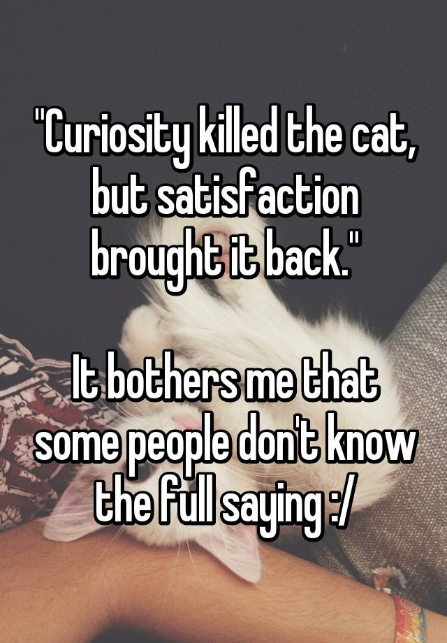 """Curiosity killed the cat, but satisfaction brought it back."" It bothers me that some people don ..."