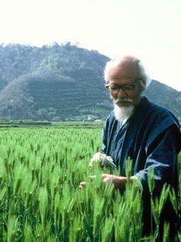 Masanobu Fukuoka: The man who did nothing | Food Freedom