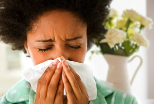 Slideshow: Allergy Myths and Facts