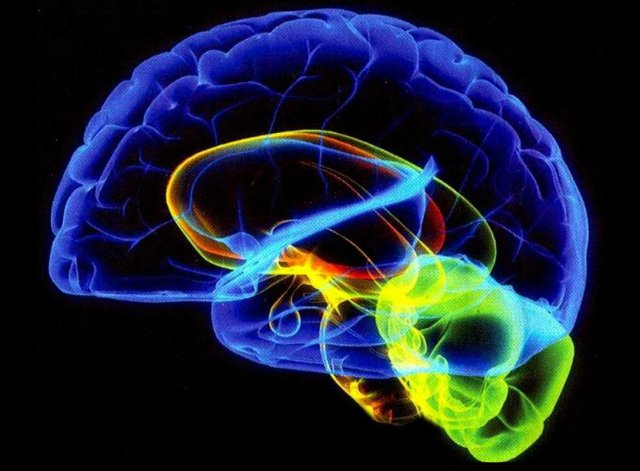 Understanding The Subconscious Mind: Change Your Mind ...