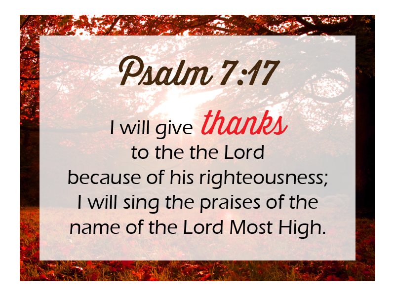 """November 20, 2016 message: """"Generosity and Thanksgiving ..."""