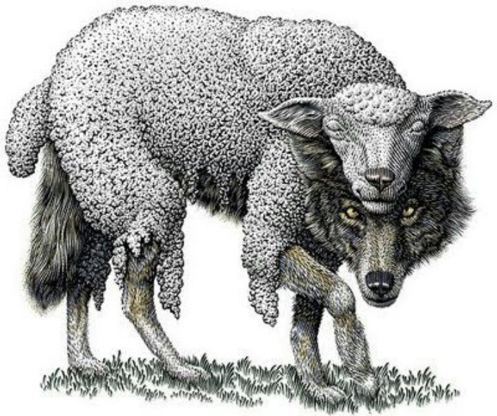 S Sheep In Wolves Clothing Quotes. QuotesGram