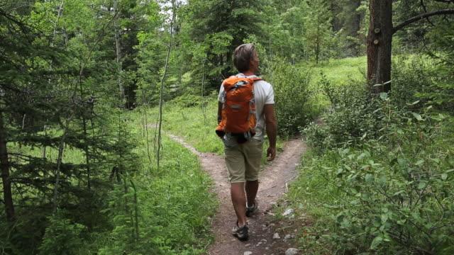 Pan Of Hiker Walking To Trail Fork Choosing Path Stock ...
