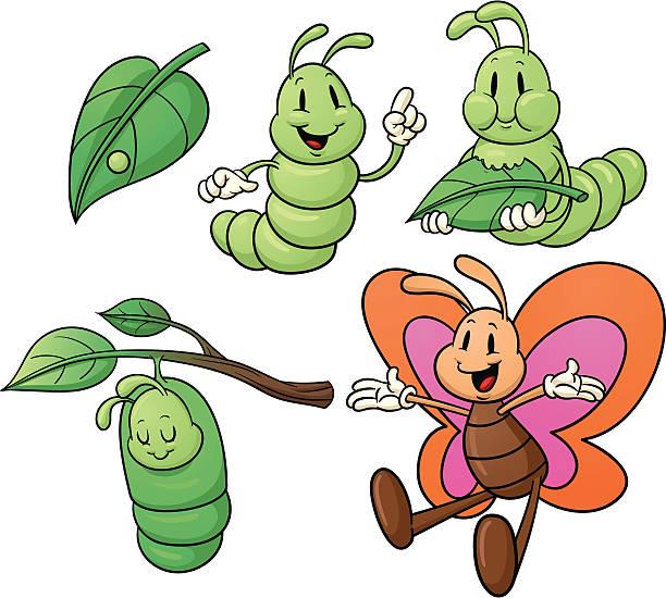 Caterpillar Clip Art, Vector Images & Illustrations - iStock