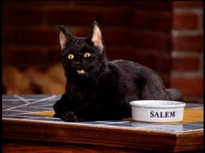 Cool Cat: Salem Saberhagen - LIONESS