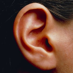 Inner ear disorders 'linked to hyperactivity ' - BBC News
