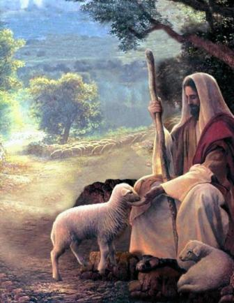 One Year Bible Blog: May 1st readings