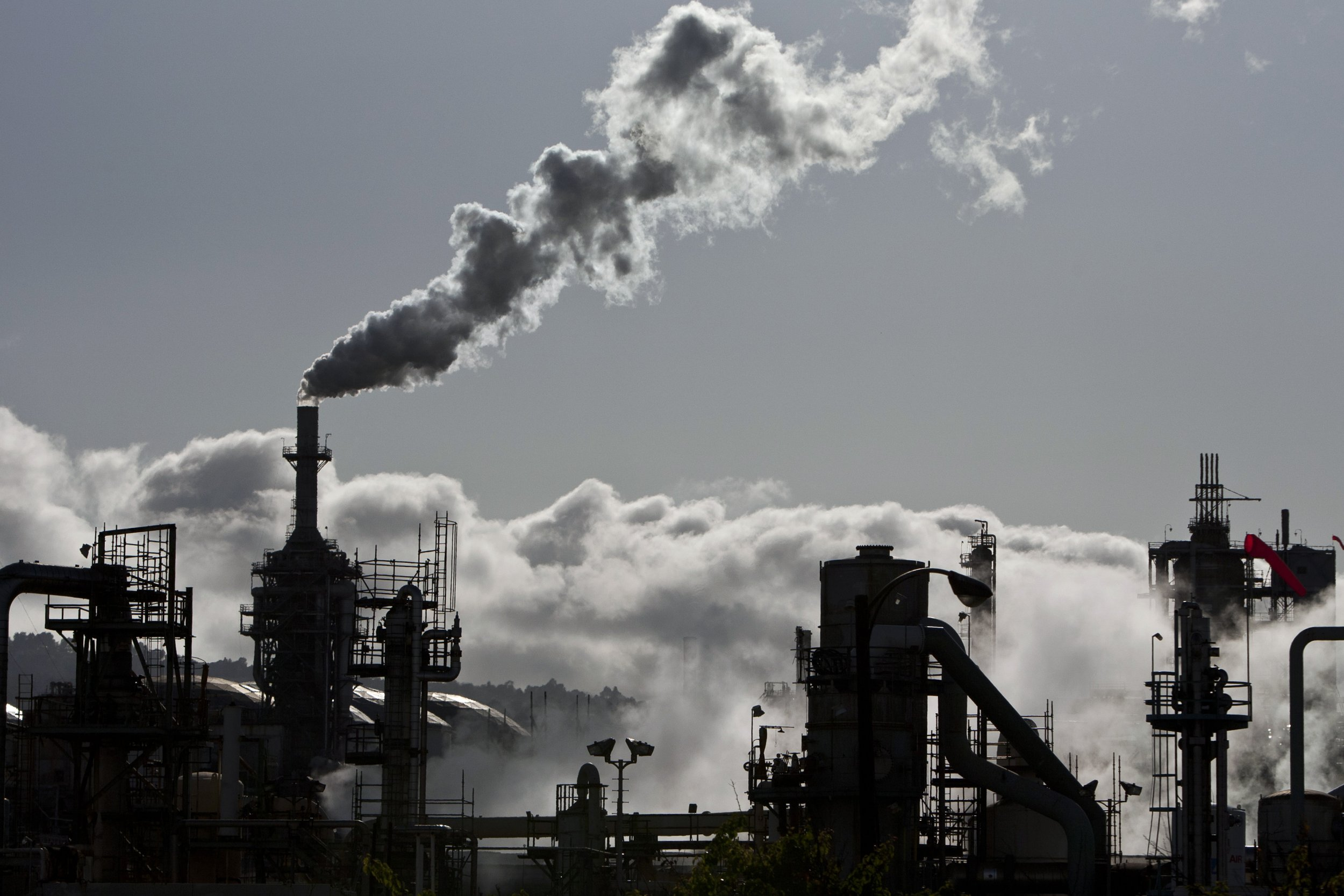 Study Finds Link Between Pollution and Suicide