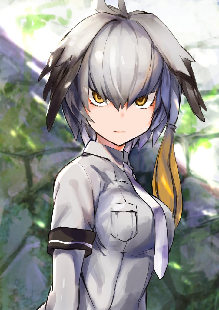 Shoebill (Kemono Friends)/#2091514 - Zerochan