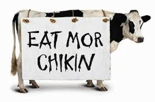 If everyone in America stopped eating beef tomorrow and started eating chicken, it'd be like ...
