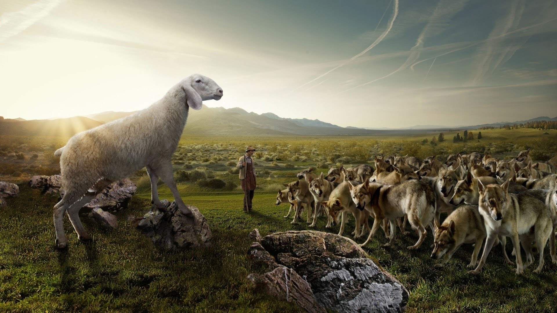 Sheep Amidst Wolves: Maintaining Gentleness