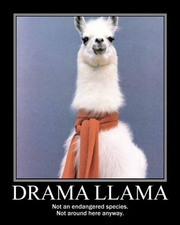 drama lama - Dump A Day