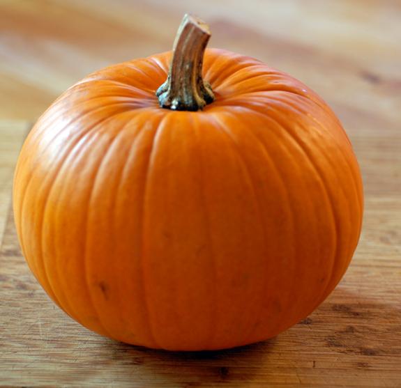 Pumpkin Archives - EasyPaleo