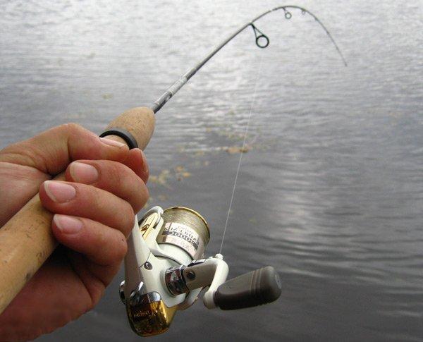 https://proxy.duckduckgo.com/iu/?u=http%3A%2F%2Fwww.fishingural.ru%2Fuploads%2Fposts%2F2015-08%2F1439057688_spinning.jpg&f=1