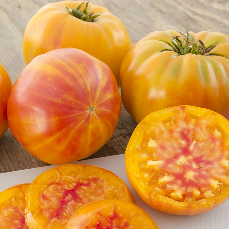 Big Rainbow Tomato | Henry Field's Seed & Nursery Co.