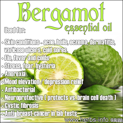 Bergamot essential oil | herbs info