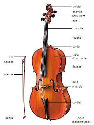 Encyclopédie Larousse en ligne - violoncelle