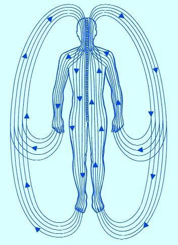 Positive Health Online | Article - Polarity Therapy ...