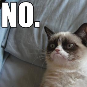 grumpy-cat-meme%2B(1).png&f=1