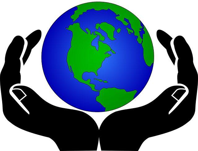 Umweltschutz - Daten, Fakten, Hintergründe & Zusammenhänge