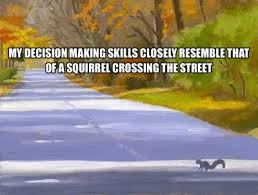 Squirrel crossing ahead | The Bold Bluebonnet