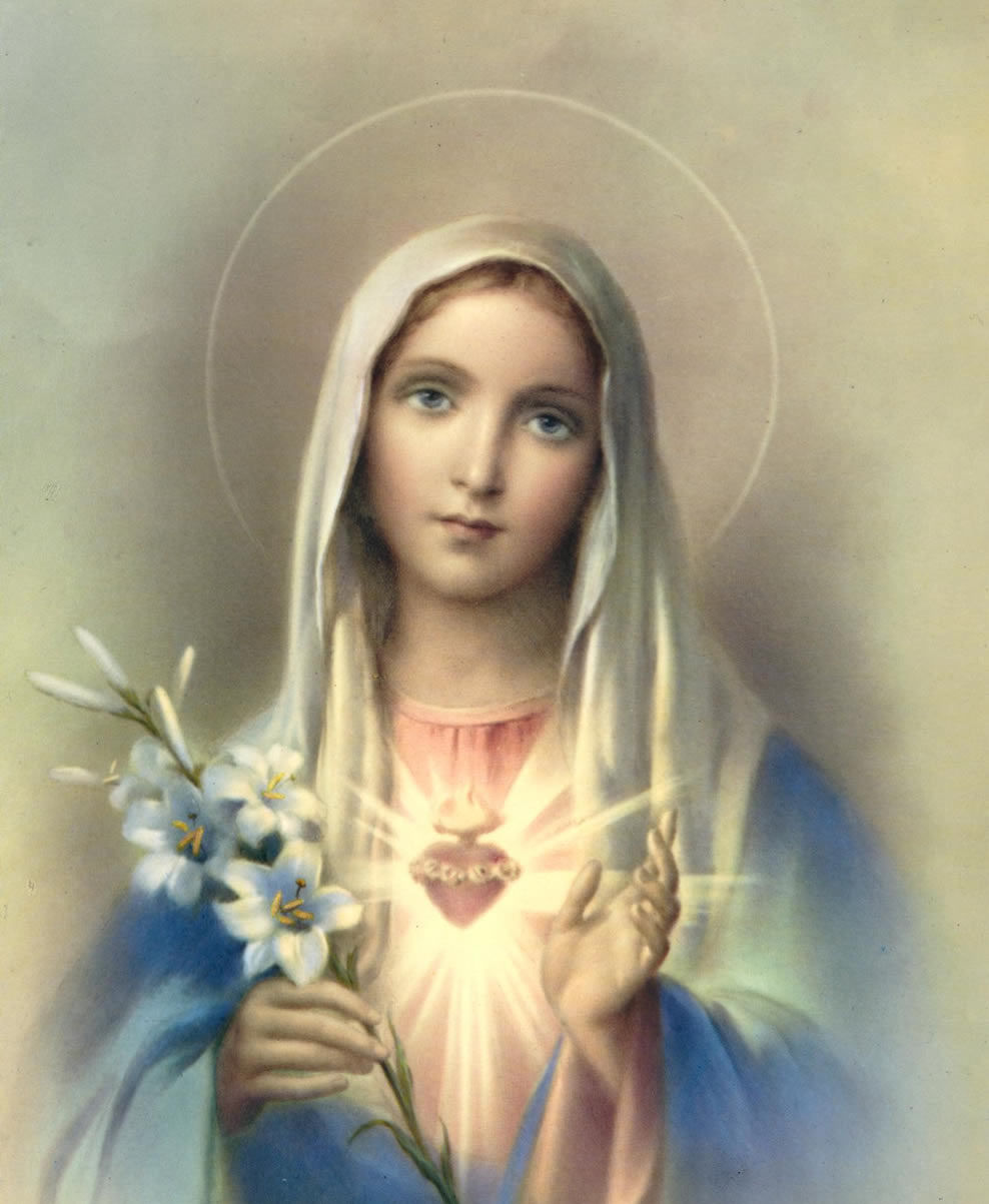 NOVENA IN HONOR OF THE IMMACULATE CONCEPTION OF THE ...