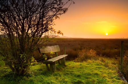 Rest at sunrise - Sunsets & Nature Background Wallpapers ...