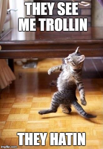Troll Cat - Imgflip