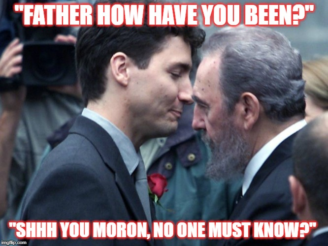 Justin Trudeau Moose Memes Pictures to Pin on Pinterest ...