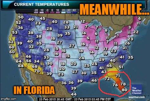 When In Florida, Do As The Floridians Do