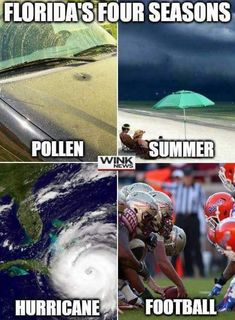 Don't Cry Northerners! #Memes of Winter in Florida ...