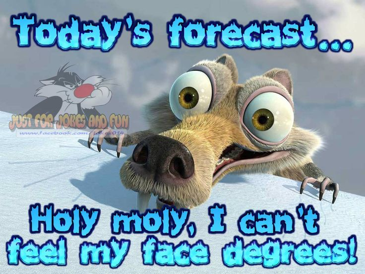 Best 25+ Funny winter quotes ideas on Pinterest | Spring ...