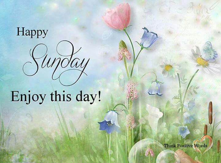 Best 25+ Happy sunday images ideas on Pinterest | Sunday images, Good morning sunday images and ...