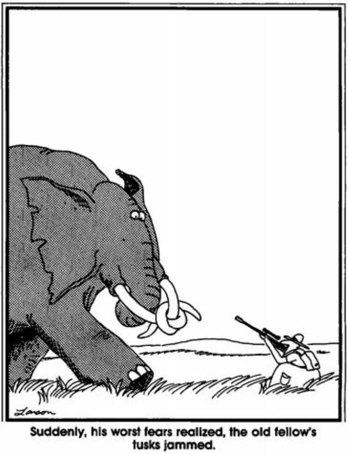 Your daily Far side comics. | Far Side | Pinterest