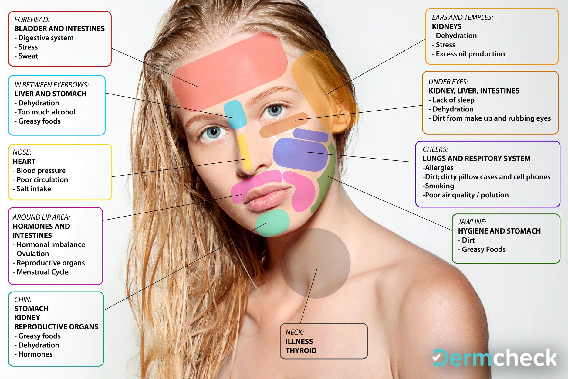 CHINESE FACE MAP � | Beauty | Face
