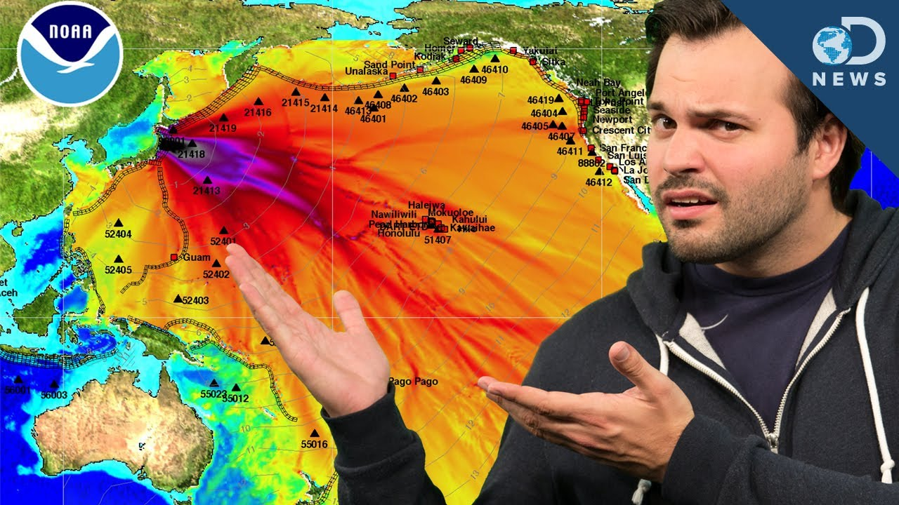 Fukushima Radiation: What You've Heard are LIES! - YouTube