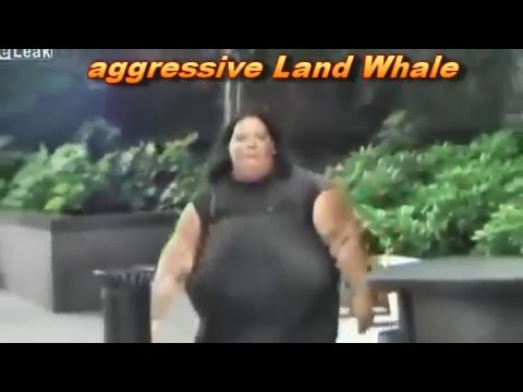 Huge Land Whale assault Men filming very funny - YouTube