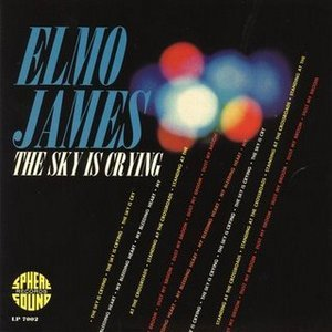 elmore james the sky is crying CD Covers