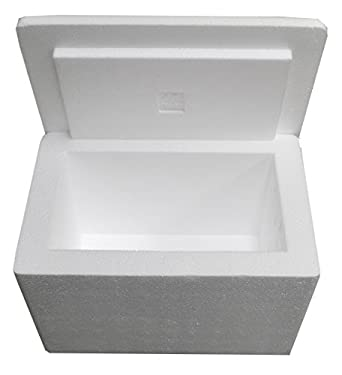 "Amazon.com: 12 X 8 X 8"" Insulated Styrofoam Shipping ..."