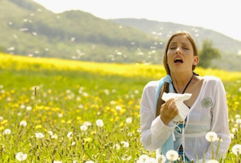 Hay Fever Symptoms, Rash, Treatment, Medicine & Remedies