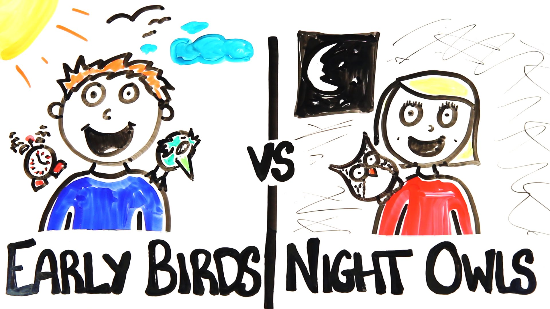 AsapSCIENCE Explores the Different Traits of Early Birds ...