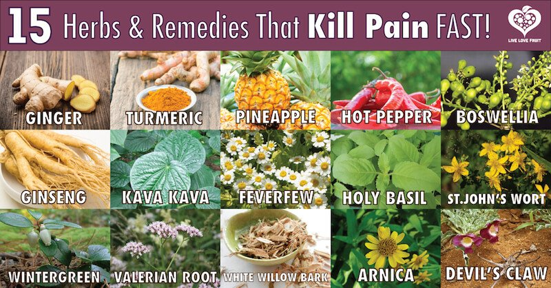 15 potent herbs and remedies that kill pain fast