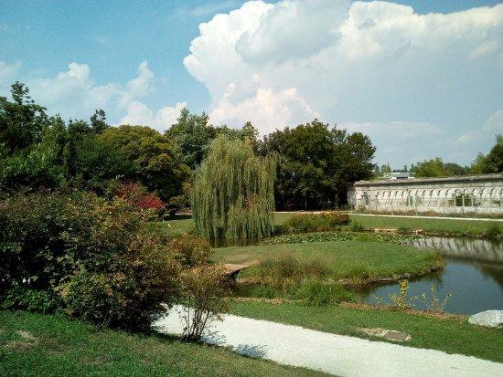 PARCO. - Parco degli Alberi Parlanti, Treviso Resmi ...