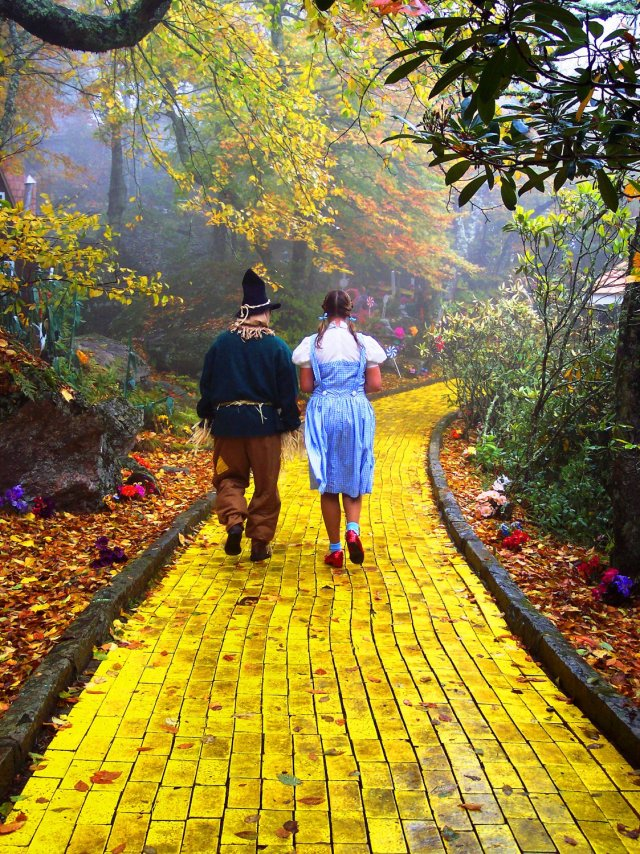 My Future Lies Beyond the Yellow Brick Road | VoVatia