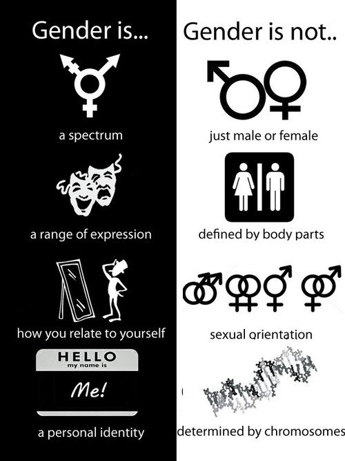 Best 25+ Gender studies ideas on Pinterest | What is non ...